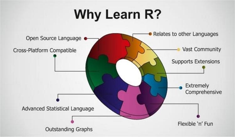 NLP Programming Language R