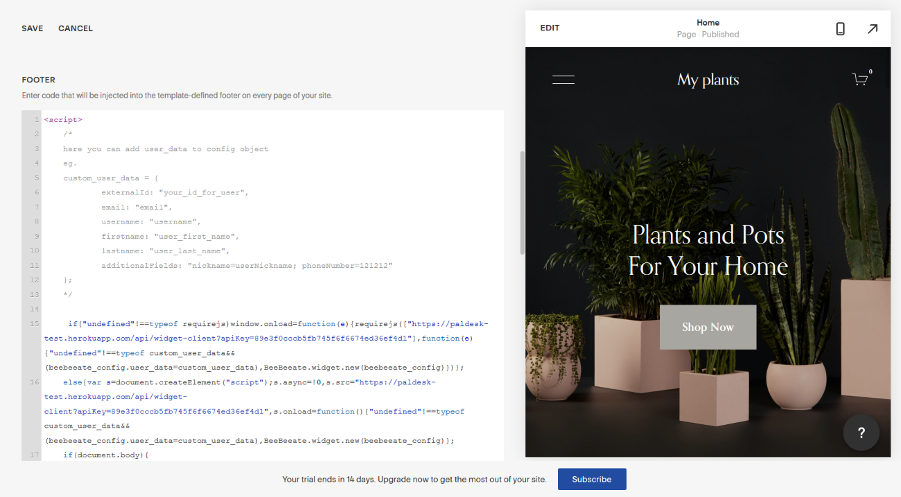 Paldesk code snippet in the Squarespace editor