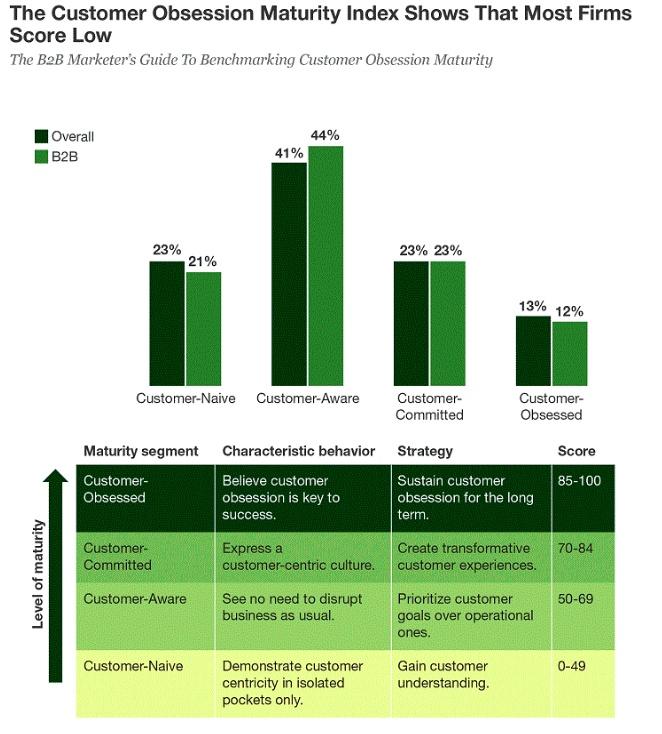 Customer centricity survey