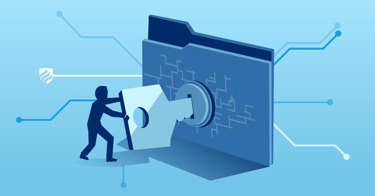paldesk-ecommerce-risks-cybersecurity